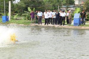 Cần nhân rộng mô hình 'dân vận khéo' trên lĩnh vực kinh tế ở Ninh Bình