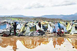 Người di cư trong 'cơn sóng đại dịch'