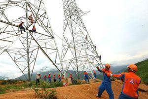 Nghệ sĩ nhiếp ảnh Nguyễn Tất Lộc: Trái tim tràn đầy nhiệt huyết với những công trình
