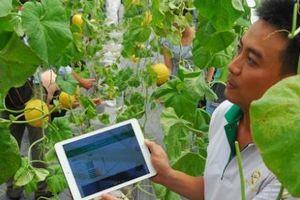 Đẩy mạnh đổi mới sáng tạo giúp nâng cao năng suất chất lượng nông nghiệp Việt Nam