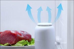 Những món đồ công nghệ ngon, bổ, rẻ giúp nghiện nhà, yêu bếp
