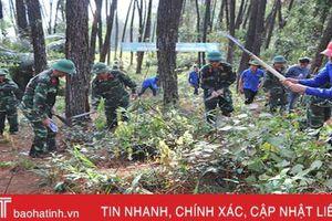 Các địa phương ở Hà Tĩnh gấp rút phòng ngừa 'giặc lửa' phá rừng