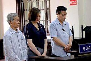 Phạt nguyên cán bộ Thanh tra tỉnh Hòa Bình 30 năm tù về tội lừa đảo