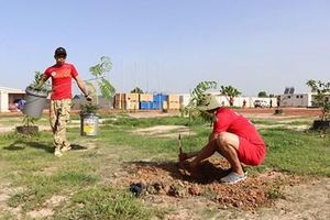 Bác sĩ mũ nồi xanh Việt Nam phát động phong trào trồng cây ở CH Nam Sudan