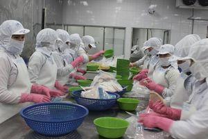 Doanh nghiệp thủy sản gia tăng xuất khẩu hàng hóa