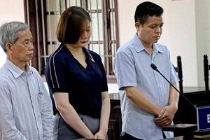 Nguyên cán bộ thanh tra tỉnh Hòa Bình chiếm đoạt 820 triệu lĩnh 30 năm tù