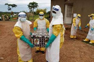 Giữa tâm bão COVID-19, châu Phi bùng phát ổ dịch Ebola mới