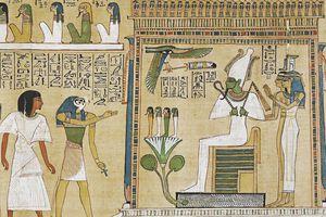Sách của bậc vương quyền dát vàng và sách quý hơn vàng