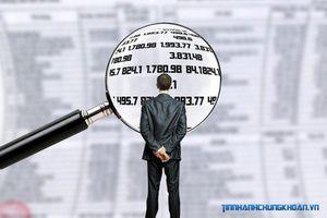 Hai cá nhân bị phạt hơn 100 triệu đồng vì lỗi giao dịch cổ phiếu PGT và VHC