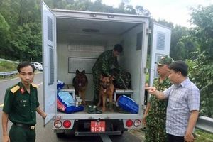 Phong tỏa núi Hải Vân, truy bắt phạm nhân tù chung thân