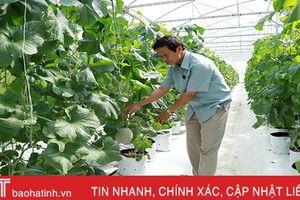 Đẩy mạnh cơ cấu ngành nông nghiệp, đảm bảo phát triển hiệu quả, bền vững
