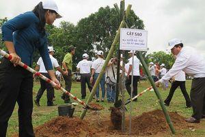 Kon Tum: Hưởng ứng Tết trồng cây
