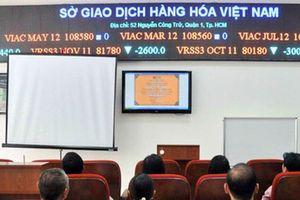 Sở Giao dịch hàng hóa Việt Nam: Thí điểm niêm yết gạo, năng lượng