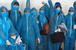 Sân bay Nội Bài đón hơn 310 người Việt từ Thụy Điển và Phần Lan về nước
