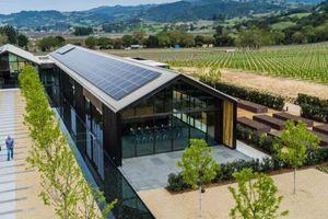 Silver Oak - Xưởng rượu vang 'xanh' nhất thế giới