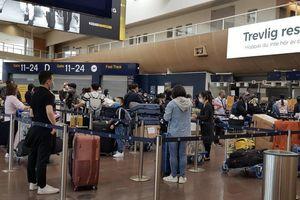 Đưa hơn 300 công dân Việt Nam từ Thụy Điển và Phần Lan về nước