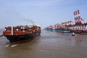 Xuất khẩu Trung Quốc lao dốc, nhập khẩu tệ nhất trong 4 năm