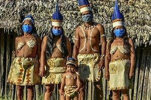 COVID-19 làm cho khu vực Amazon của Brazil khó khăn gấp đôi