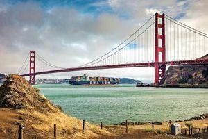 Làm thế nào để mua vé máy bay đi California giá rẻ nhất?