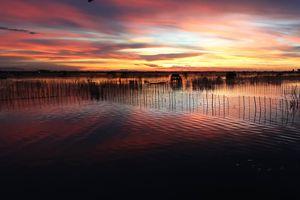 Ngất ngây trước phong cảnh tuyệt đẹp của đầm Chuồn - phá Tam Giang