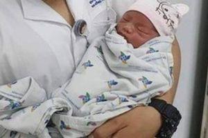 Thêm một bé sơ sinh bị bỏ rơi trong tình trạng kiến cắn, hoại tử dây rốn