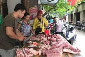 Thủ tướng yêu cầu làm rõ việc giá thịt lợn bị đẩy cao