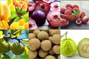 7 loại trái cây cực nóng, ăn nhiều dễ nổi mụn, phát ban
