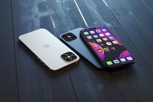 Bất ngờ lộ thông tin Apple đăng kí ra mắt tới 9 mẫu iPhone trong năm nay
