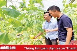 Thanh Hóa khơi dậy tiềm năng phát triển nông nghiệp công nghệ cao