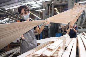 Sau Hàn Quốc, đến lượt Hoa Kỳ khởi xướng điều tra gỗ dán của Việt Nam