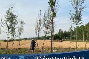 Phía sau quyết định về quê 'cày cuốc' của hàng triệu lao động Trung Quốc: Nỗi đau và những giấc mơ dang dở