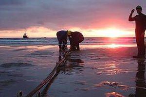 Việt Nam sắp có thêm tuyến cáp quang biển dài 9.400 km, băng thông cao ấn tượng