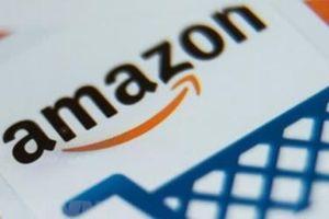 Amazon bị Mỹ 'sờ gáy' sau liên tiếp nghi án