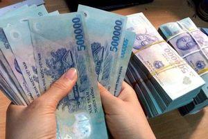 Quảng Bình: Công ty sản xuất vật liệu xây dựng Cosevco I nợ gần 60 tỷ đồng tiền thuế