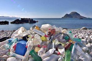 Rác nhựa gia tăng vì đại dịch
