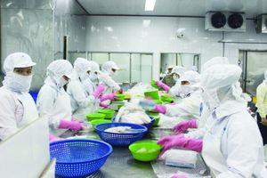 EVFTA: Lợi thế cạnh tranh cho doanh nghiệp thủy sản