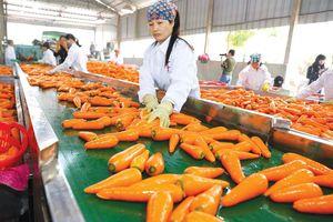 Bảo đảm an toàn thực phẩm: Quản chặt từ sản xuất đến phân phối