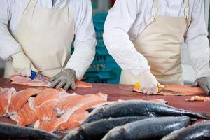 Trung Quốc dừng nhập cá hồi từ châu Âu vì sợ COVID-19