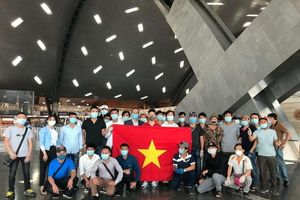 266 công dân Việt từ Kuwait, Qatar và Ai Cập về nước