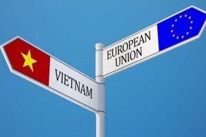 EVFTA và Việt Nam trở thành cầu nối quan hệ EU- ASEAN