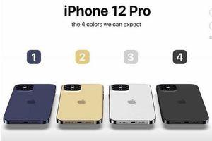 Người mua iPhone 12 sẽ không được tặng kèm AirPods?