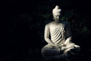 Xin đừng cố ý nói sai kinh Phật