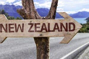 New Zealand - một 'thiên đường du học' khác dành cho Việt Nam