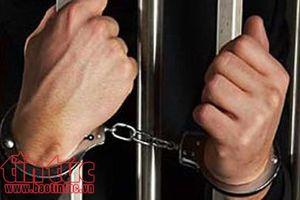 Phạt tù nguyên Giám đốc, Phó Giám đốc Sở Y tế Gia Lai do sai phạm trong đấu thầu thuốc