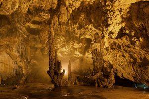 Khám phá hang động đá vôi 300 triệu năm ở Cao Bằng