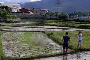 Vụ thảm án ở Điện Biên: Bước đầu xác định được nguyên nhân liên quan đến số tiền khủng