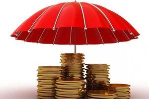 Bảo hiểm tiền gửi - 'lá chắn thép' bảo vệ người dân