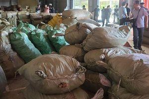 Phát hiện khoảng 100 tấn dược liệu nhập từ Trung Quốc 'đội lốt' hàng nông sản