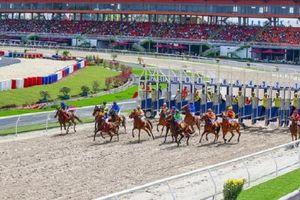 Trường đua ngựa 9.500 tỷ của đại gia Hàn Quốc tại Sóc Sơn vẫn 'bất động' vì thiếu giấy phép kinh doanh đặt cược