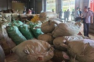 103 tấn dược liệu 'đội lốt' nông sản từ Trung Quốc nhập cảng Đà Nẵng